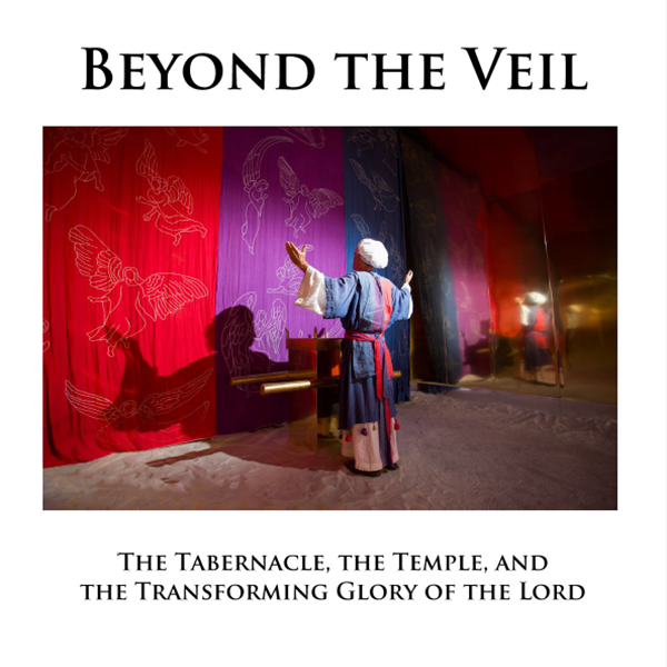Cyber Monday Giveaway: Beyond the Veil (FREE Workbook)