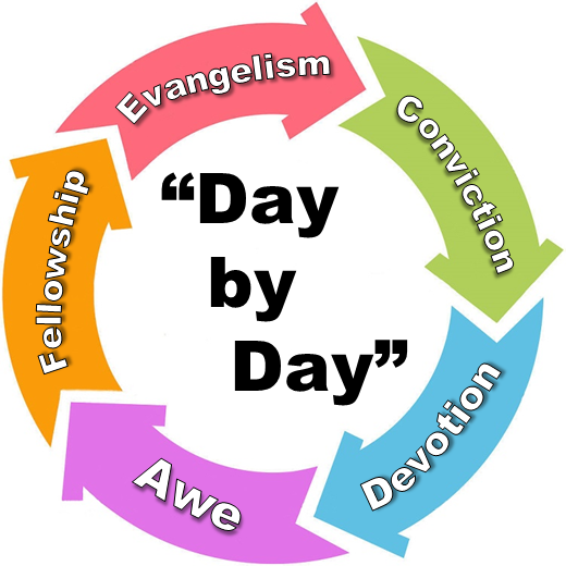Day by Day Cycle