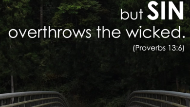Photo of Weekend Wisdom – Proverbs 13:6