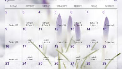 Photo of February 2020 Daily Bible Reading Calendar