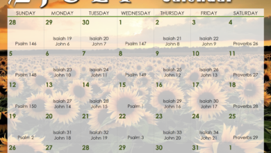 Photo of July 2020 Daily Bible Reading Calendar