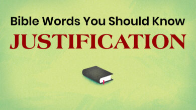 Photo of Bible Words You Should Know: JUSTIFICATION