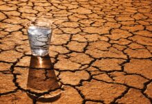Photo of Like Water in a Dry Place