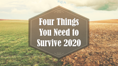 Photo of Four Things You Need to Survive 2020